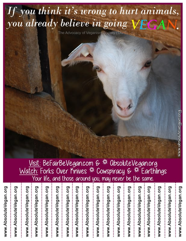 Vegan advocacy tear-off posters - If you think it's wrong to hurt animals, you already believe in going VEGAN. AbsoluteVegan.org