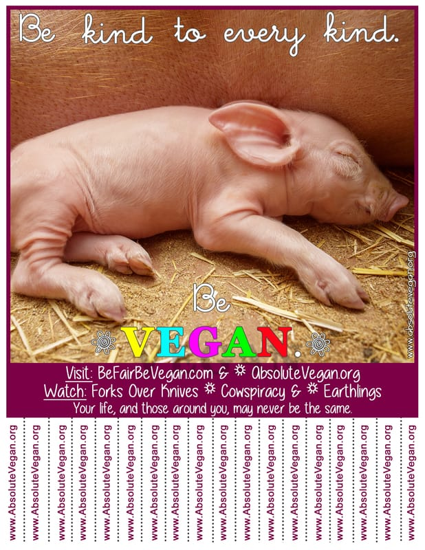 Vegan advocacy tear-off posters - Be kind to every kind. Be VEGAN.  AbsoluteVegan.org