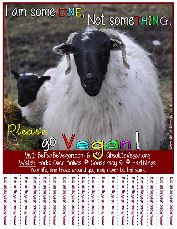 Vegan advocacy tear-off posters - I am someONE. Not someTHING. Please go Vegan!  AbsoluteVegan.org
