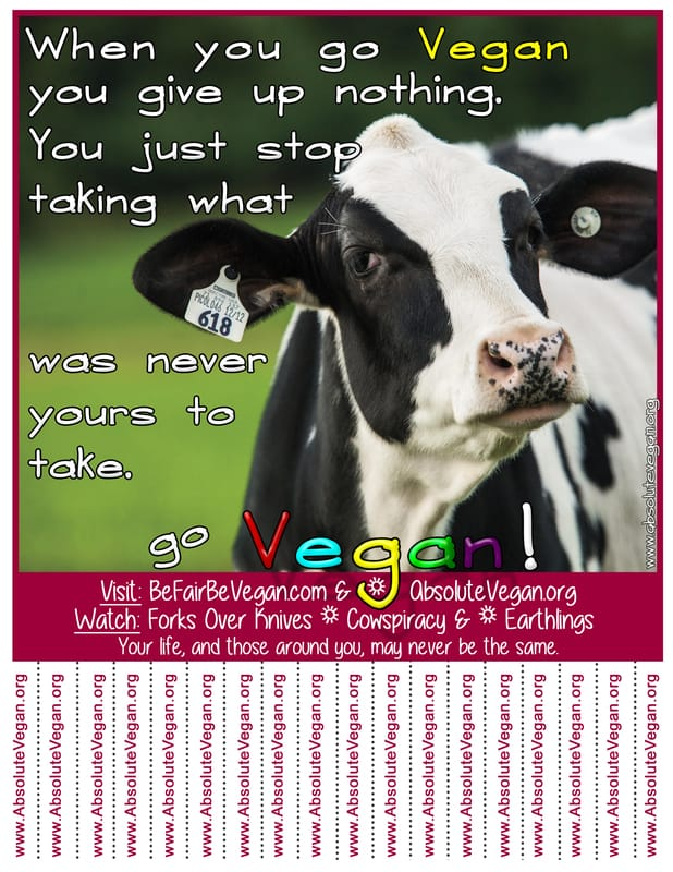 Vegan advocacy tear-off posters - When you go Vegan you give up nothing. You just stop taking what was never yours to take. Go Vegan! AbsoluteVegan.org