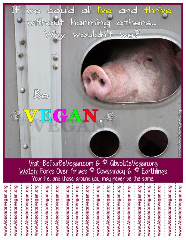 Vegan advocacy tear-off posters - If we could all live and thrive without harming others...Why wouldn't we? AbsoluteVegan.org