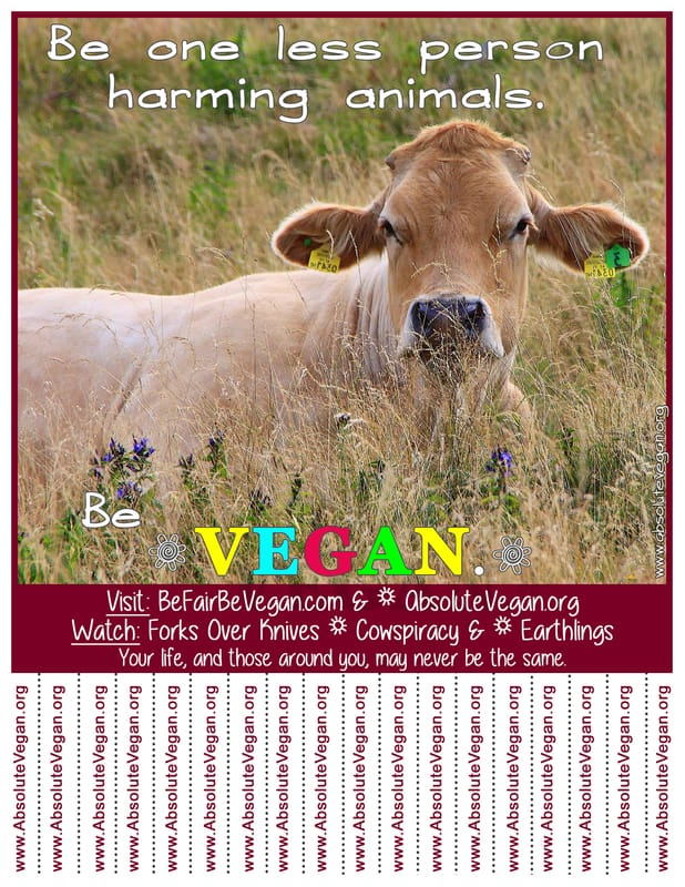 Vegan advocacy tear-off posters - Be one less person harming animals. Be VEGAN.  AbsoluteVegan.org